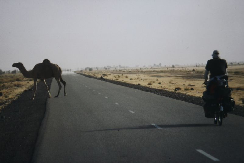 Westsahara 2002 | © privat