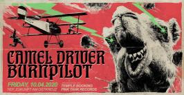 10.4. Camel Driver + Burnpilot